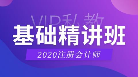 2020CPA基础精讲班—审计