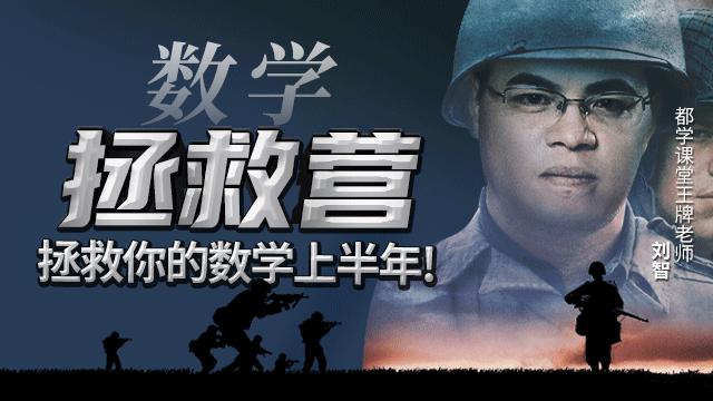 刘智数学拯救营(6大专题)